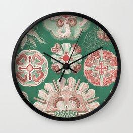 Marine organisms by Ernst Haeckel Wall Clock