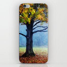 Nature's Generosity iPhone Skin