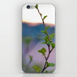 Colourful iPhone Skin