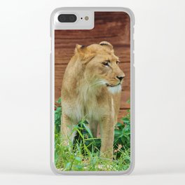African Lioness Clear iPhone Case