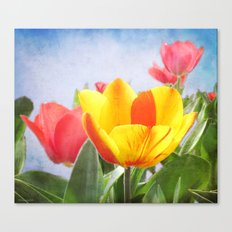 Tulip Joy Canvas Print