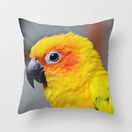 Vibrant Package Throw Pillow
