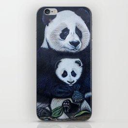 Giant Pandas iPhone Skin