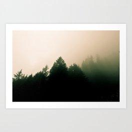 Trees Of The Field #2 Art Print