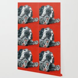 Leonard the Senior Dog Wallpaper