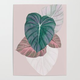 Pastel Leaves Poster