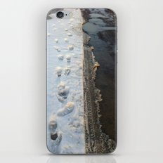 winter is gone? iPhone & iPod Skin