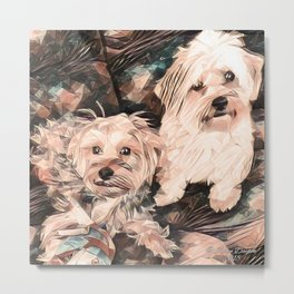 Penny and Copper dogs Art Signed Metal Print