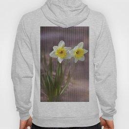 Daffodils Through Violet Glass Hoody
