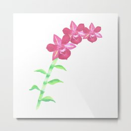 Pink dendrobium orchids with leaves and stalk Metal Print