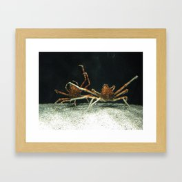 En Garde Framed Art Print