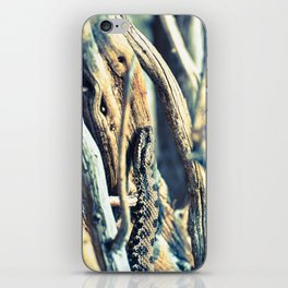 Wooden Viper iPhone Skin