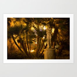 Lady and the Night Art Print