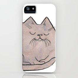 Sleepy Kitty Lump iPhone Case