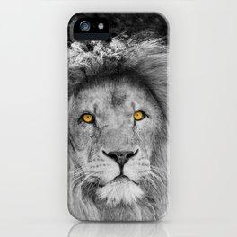 LION BEAUTY iPhone Case