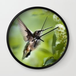 Hummingbird Love Wall Clock