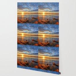 Winds On Big Marsh Wallpaper