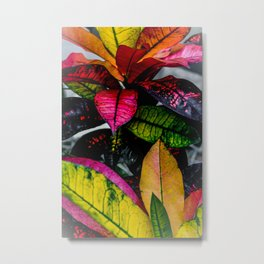 Funky Foliage Metal Print