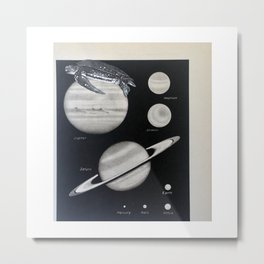 Turtle #9 (Jupiter) [Cecilia Lee] Metal Print