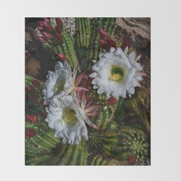 White Argentine_Giant_Cacti in Bloom Throw Blanket