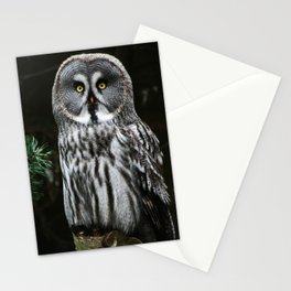 The Great Grey Owl Stationery Cards