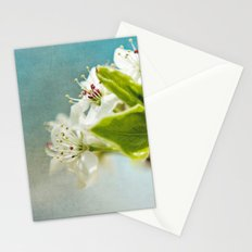 Sunshine always follows the rain. Stationery Cards