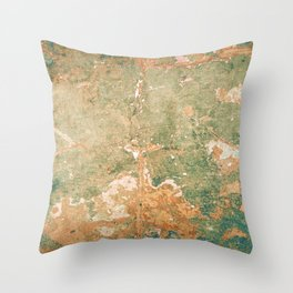 Aging Architecture Throw Pillow
