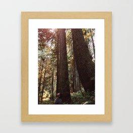Among Giants Framed Art Print