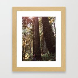 Among Giants Framed Art Print