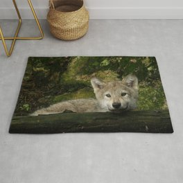 Timber wolf pup Rug