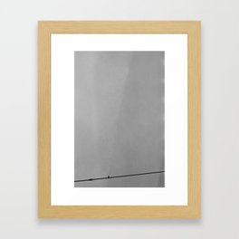 Sitting Crow Framed Art Print