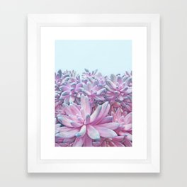 Sweet Succulents Framed Art Print