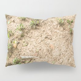 Coming to the Surface, Killing Fields, Cambodia Pillow Sham