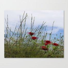 Summerbreeze Canvas Print