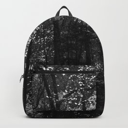 Great Smoky Mountains Forest Backpack