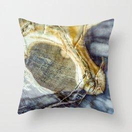 Petrified wood 2003 Throw Pillow