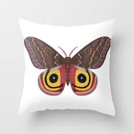 io moth (Automeris io) female specimen 2 Throw Pillow