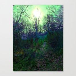 Green Fog Forest Canvas Print