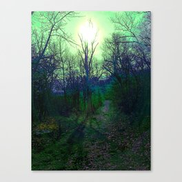 Green Fog Forest Canvas Print