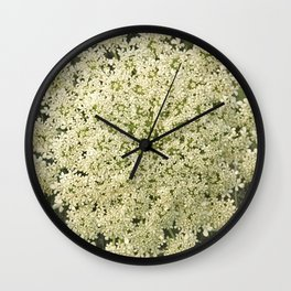 Botanical - Queen Anne's Lace, Bishops Lace Flower Wall Clock
