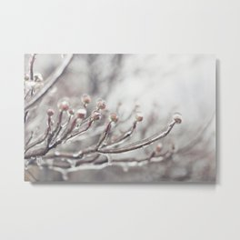 Icy Branches #1 Metal Print