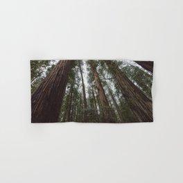 Through the Woods Hand & Bath Towel