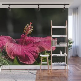 Large Hibiscus Wall Mural