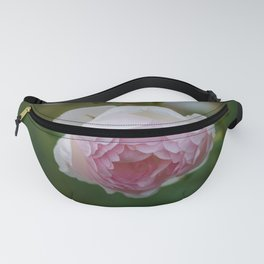 Romantic Pink Rose in the Evening Light Fanny Pack