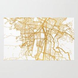 MEDELLÍN COLOMBIA CITY STREET MAP ART Rug