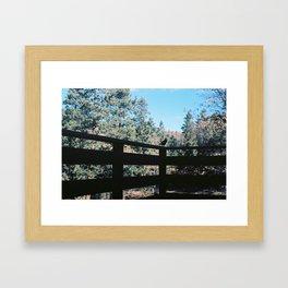 Mr. Blue Jay Framed Art Print