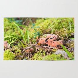 Hydnellum Peckii - Scary Beautiful Mushroom Rug