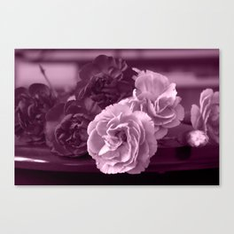 Carnation On The Table in Purple Canvas Print