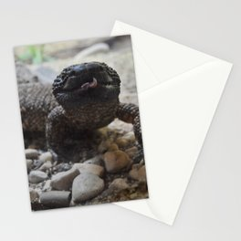 Lizard Queen Stationery Cards