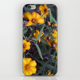 Small Orange Flowers iPhone Skin